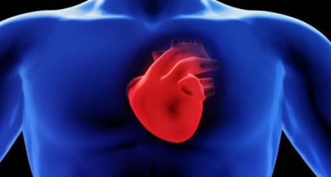Atrial Fibrillation and Mortality